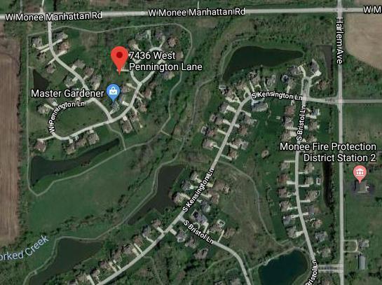 7436 W Pennington Lane, Monee, IL 60449 (MLS #10023569) :: Helen Oliveri Real Estate