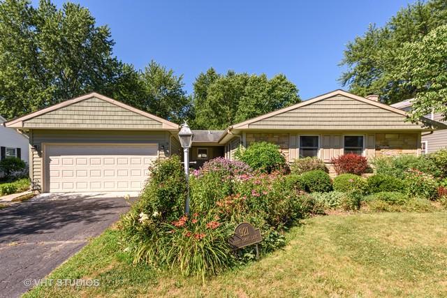 921 Shady Grove Lane, Buffalo Grove, IL 60089 (MLS #10024082) :: The Schwabe Group