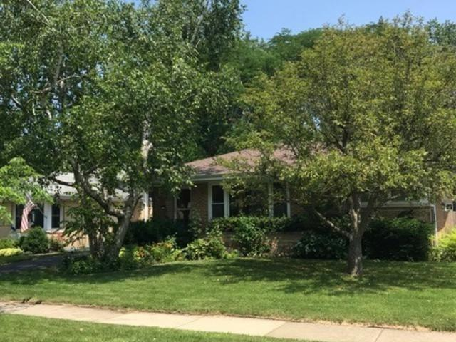 513 N Prospect Manor Avenue, Mount Prospect, IL 60056 (MLS #10024184) :: The Schwabe Group