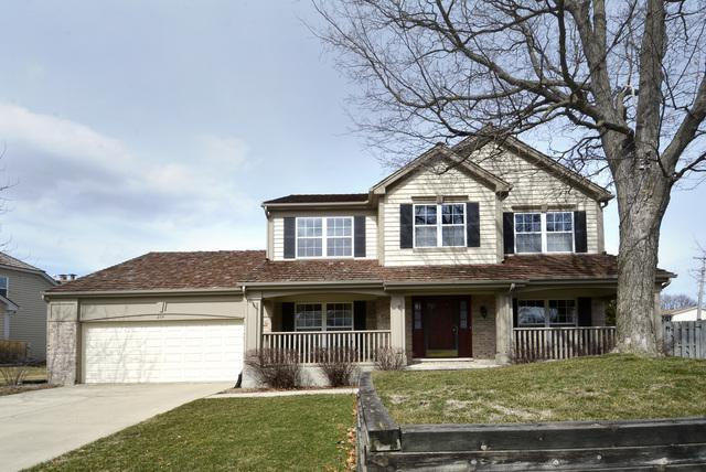 214 Avondale Drive, Palatine, IL 60067 (MLS #10024439) :: The Jacobs Group