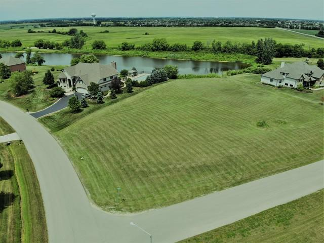 5500 Bluestem Court, Oswego, IL 60543 (MLS #10024584) :: The Dena Furlow Team - Keller Williams Realty