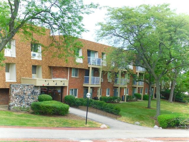 1 Villa Verde Drive #218, Buffalo Grove, IL 60089 (MLS #10024670) :: The Schwabe Group