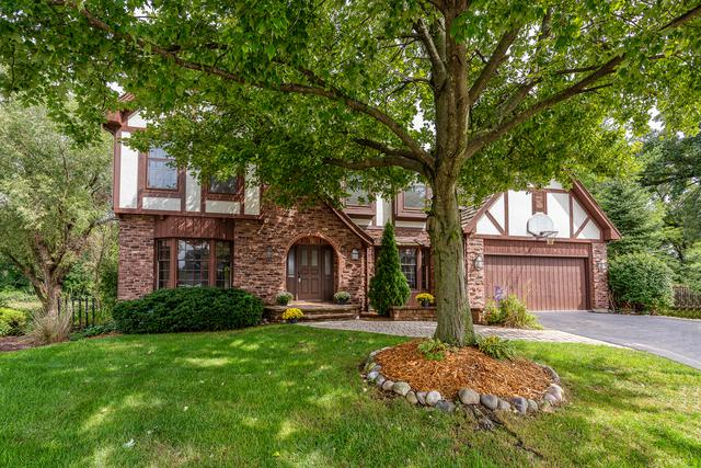 25W710 White Birch Lane, Wheaton, IL 60189 (MLS #10025321) :: The Jacobs Group