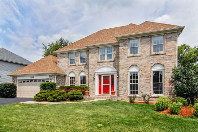 583 Apple River Drive, Naperville, IL 60565 (MLS #10025437) :: The Wexler Group at Keller Williams Preferred Realty