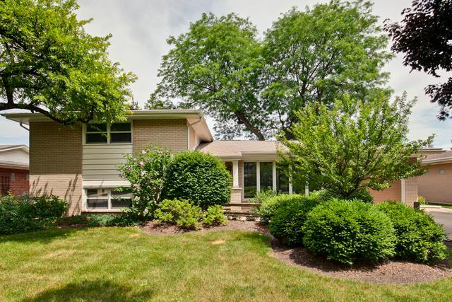 913 S School Street, Mount Prospect, IL 60056 (MLS #10025714) :: The Schwabe Group