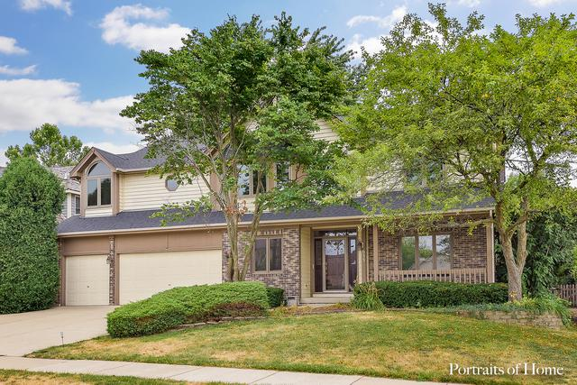633 Clarendon Lane, Aurora, IL 60504 (MLS #10025724) :: The Dena Furlow Team - Keller Williams Realty