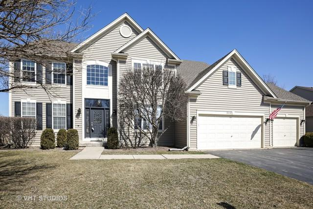 211 Summerdale Lane, Algonquin, IL 60102 (MLS #10026814) :: Key Realty