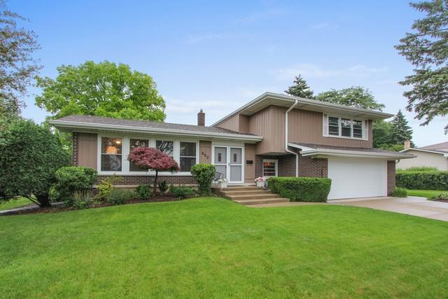 802 E Appletree Lane, Arlington Heights, IL 60004 (MLS #10027974) :: The Schwabe Group