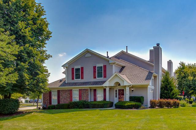259 Millers Crossing, Itasca, IL 60143 (MLS #10030618) :: The Spaniak Team