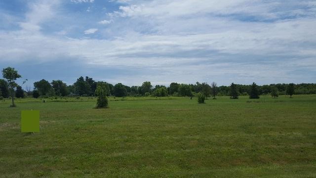 8032 Shadow Creek Lane, Yorkville, IL 60560 (MLS #10030911) :: Baz Realty Network | Keller Williams Preferred Realty