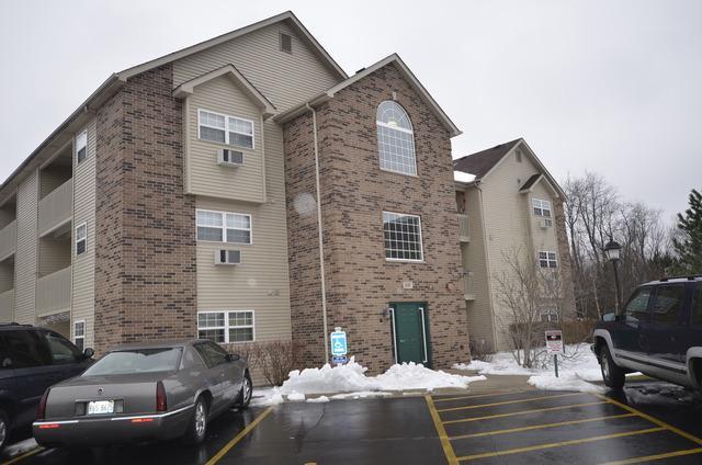 330 Cunat Boulevard 1B, Richmond, IL 60071 (MLS #10031337) :: Domain Realty
