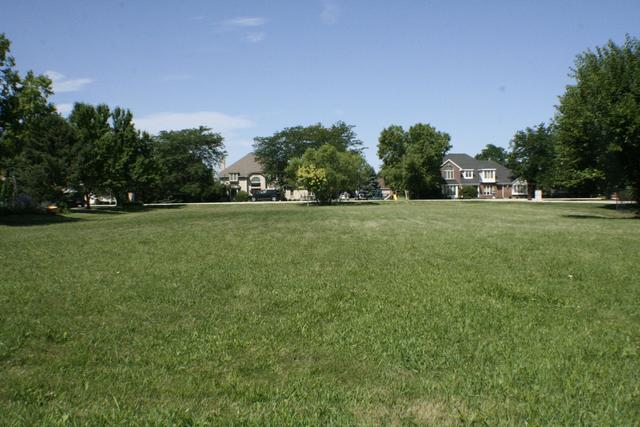 17563 S Richmond Road, Plainfield, IL 60586 (MLS #10032627) :: Property Consultants Realty