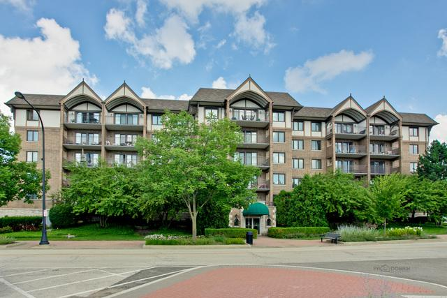 15 S Pine Street 304A, Mount Prospect, IL 60056 (MLS #10033139) :: Domain Realty