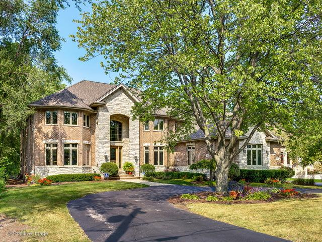 1091 Granville Avenue, Itasca, IL 60143 (MLS #10033325) :: The Jacobs Group
