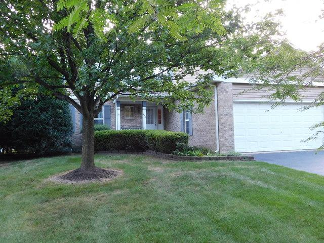 155 Chestnut Lane, Bolingbrook, IL 60490 (MLS #10033557) :: The Dena Furlow Team - Keller Williams Realty