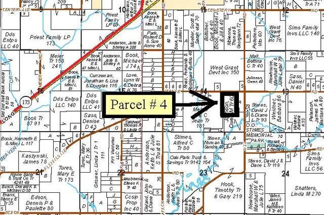 Lot 4 Wange Road, Capron, IL 61012 (MLS #10033918) :: The Jacobs Group