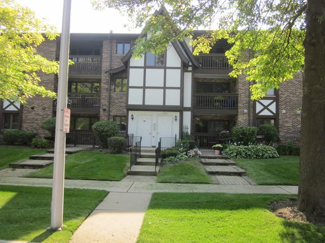 10221 Major Avenue #202, Oak Lawn, IL 60453 (MLS #10034751) :: The Dena Furlow Team - Keller Williams Realty