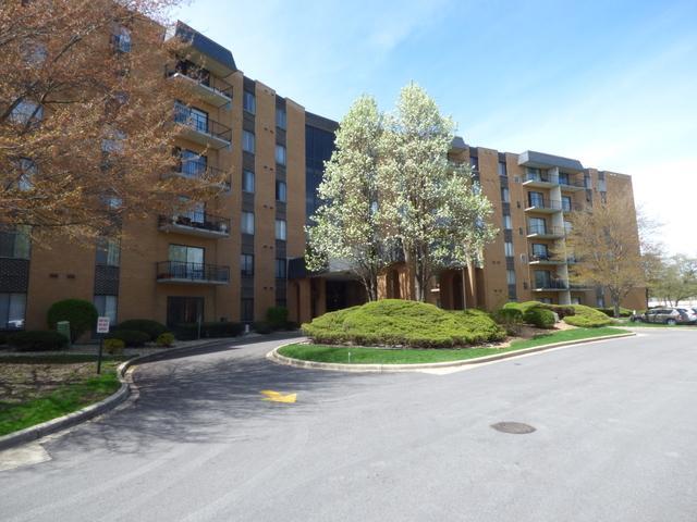 700 N Bruce Lane #103, Glenwood, IL 60425 (MLS #10034825) :: Domain Realty
