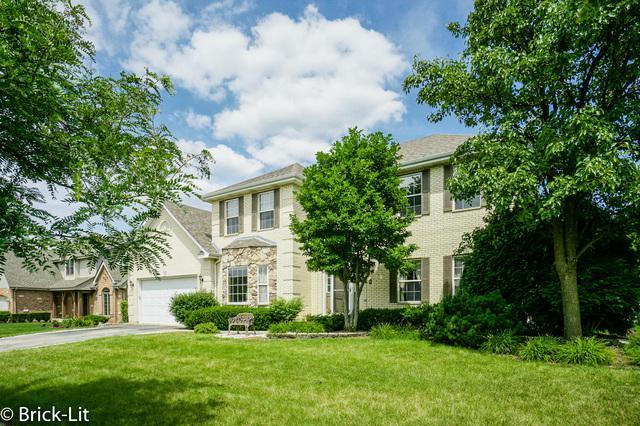 10424 Santa Cruz Lane, Orland Park, IL 60467 (MLS #10035011) :: Domain Realty