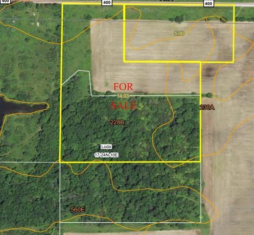 150 Cr 400 N, Loda, IL 60948 (MLS #10036122) :: Ryan Dallas Real Estate