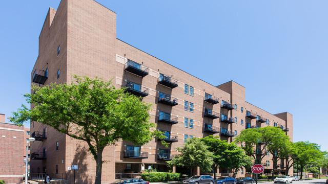 1000 E 53rd Street #503, Chicago, IL 60615 (MLS #10038176) :: Baz Realty Network   Keller Williams Preferred Realty