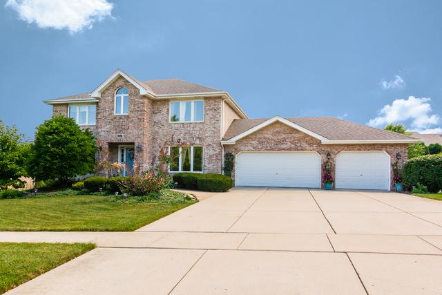 12123 W Arlene Drive, Homer Glen, IL 60491 (MLS #10038235) :: Domain Realty