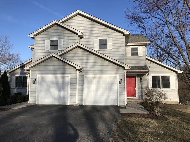 215-217 S Collins Street, South Elgin, IL 60177 (MLS #10038791) :: Domain Realty