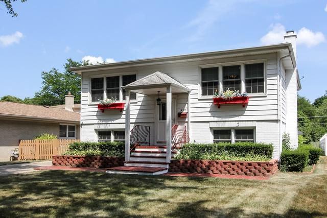 1213 S Walnut Avenue, Arlington Heights, IL 60005 (MLS #10039064) :: The Schwabe Group