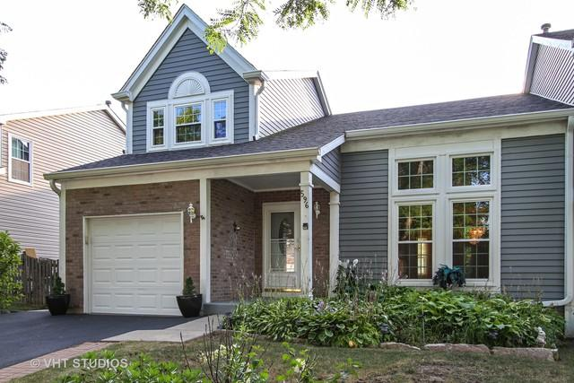 596 Sandwedge Place, Gurnee, IL 60031 (MLS #10039930) :: Domain Realty
