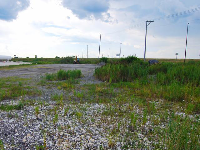 000 Rt. 53, Gardner, IL 60424 (MLS #10040341) :: The Jacobs Group