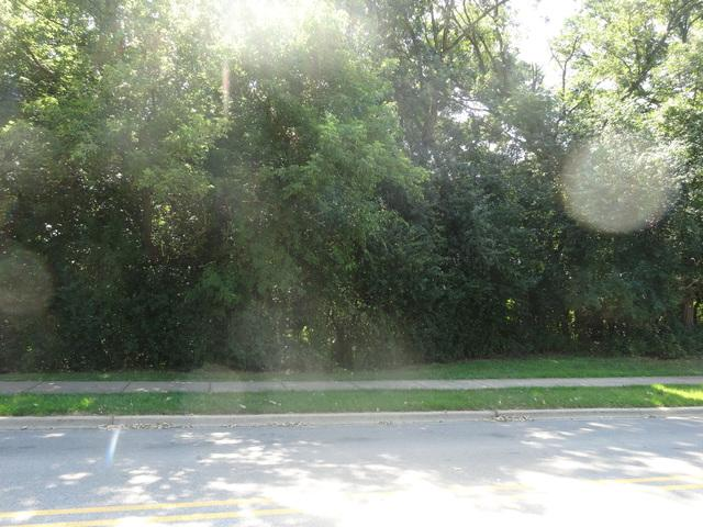 LOT 2 Ashbury Avenue, Fox River Grove, IL 60021 (MLS #10040382) :: The Spaniak Team