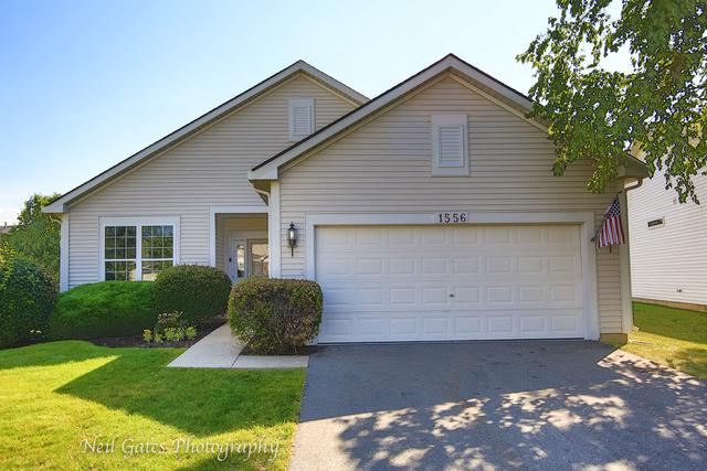 1556 Benzie Circle, Romeoville, IL 60446 (MLS #10040411) :: The Jacobs Group