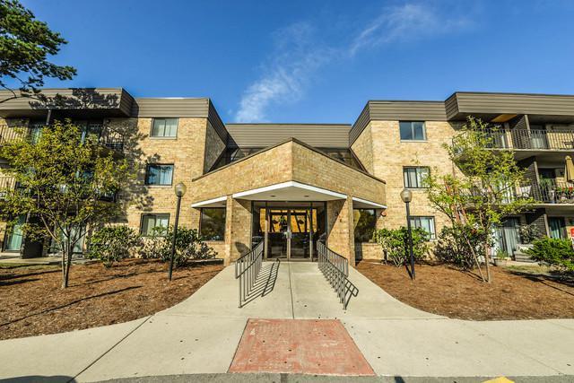 5600 Astor Lane #320, Rolling Meadows, IL 60008 (MLS #10041145) :: Domain Realty