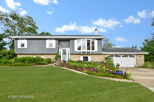 25125 S Rondorey Road, Elwood, IL 60421 (MLS #10041936) :: Ani Real Estate