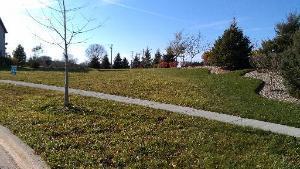 3250 Covington Lane, Algonquin, IL 60102 (MLS #10042126) :: Ryan Dallas Real Estate