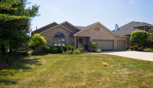 13103 Beaver Lake Drive, Homer Glen, IL 60491 (MLS #10042337) :: Domain Realty