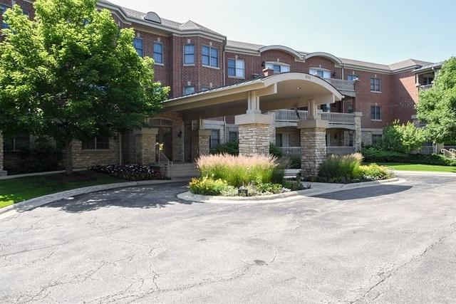 950 Augusta Way #210, Highland Park, IL 60035 (MLS #10043175) :: Domain Realty