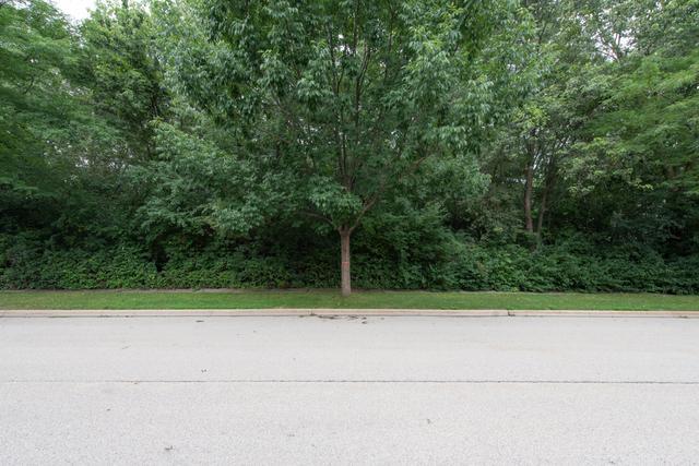 0 University Avenue, Gurnee, IL 60031 (MLS #10043812) :: Littlefield Group