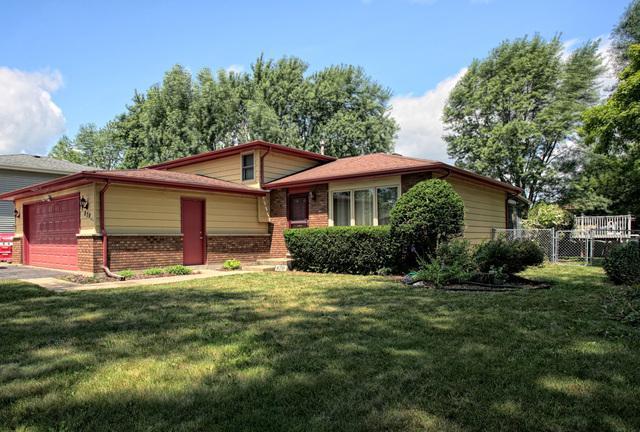 870 James Street, South Elgin, IL 60177 (MLS #10044014) :: Domain Realty