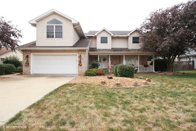 12 Old Farm North Court, Bradley, IL 60915 (MLS #10044071) :: Domain Realty