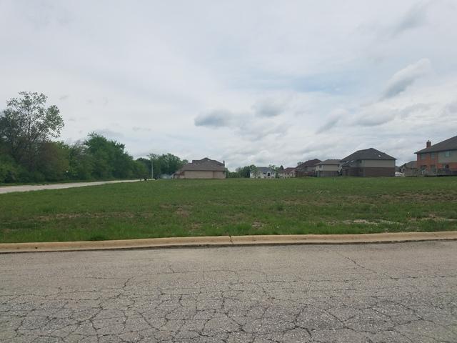 22801 Farm Trace Drive, Richton Park, IL 60471 (MLS #10044674) :: Domain Realty