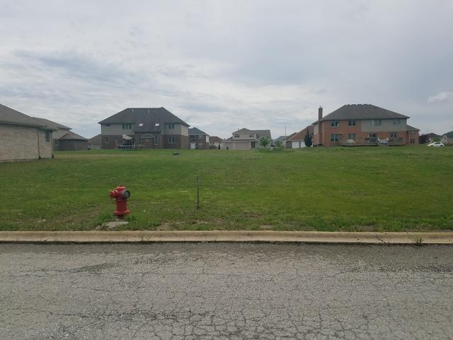 3843 Patricia Lane, Richton Park, IL 60471 (MLS #10044679) :: Domain Realty