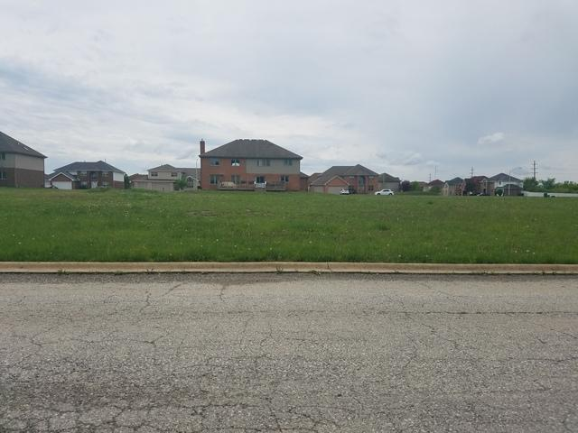 3837 Patricia Lane, Richton Park, IL 60471 (MLS #10044688) :: Domain Realty