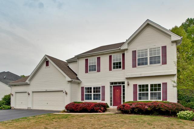 446 Oak Grove Circle, Wauconda, IL 60084 (MLS #10045237) :: Domain Realty