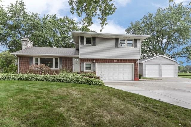 700 Crest Avenue, Schaumburg, IL 60193 (MLS #10045408) :: Domain Realty