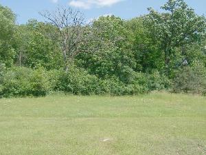 125 N Wynstone Drive, North Barrington, IL 60010 (MLS #10045448) :: The Jacobs Group