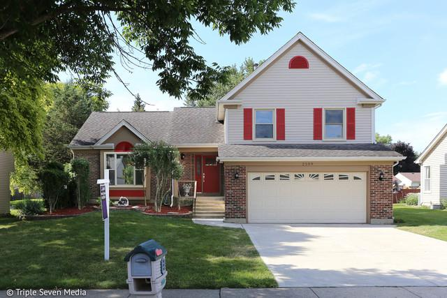 2509 Lawn Court, Schaumburg, IL 60193 (MLS #10045802) :: Domain Realty