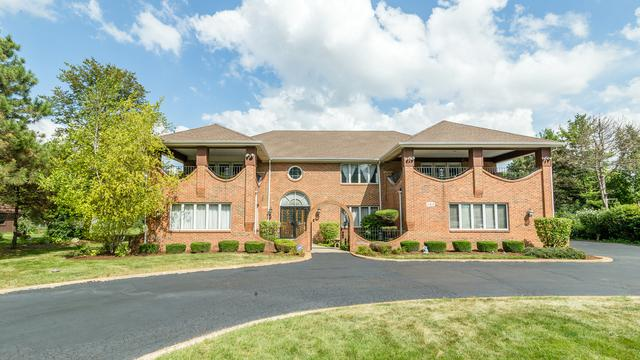 163 Canvasback Lane, Bloomingdale, IL 60108 (MLS #10046523) :: Domain Realty