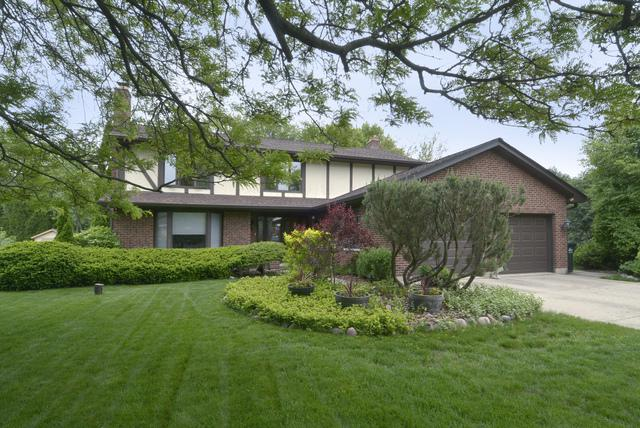 305 N Gail Court, Prospect Heights, IL 60070 (MLS #10046729) :: The Spaniak Team