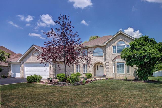10580 Lexington Lane, Frankfort, IL 60423 (MLS #10046820) :: Littlefield Group